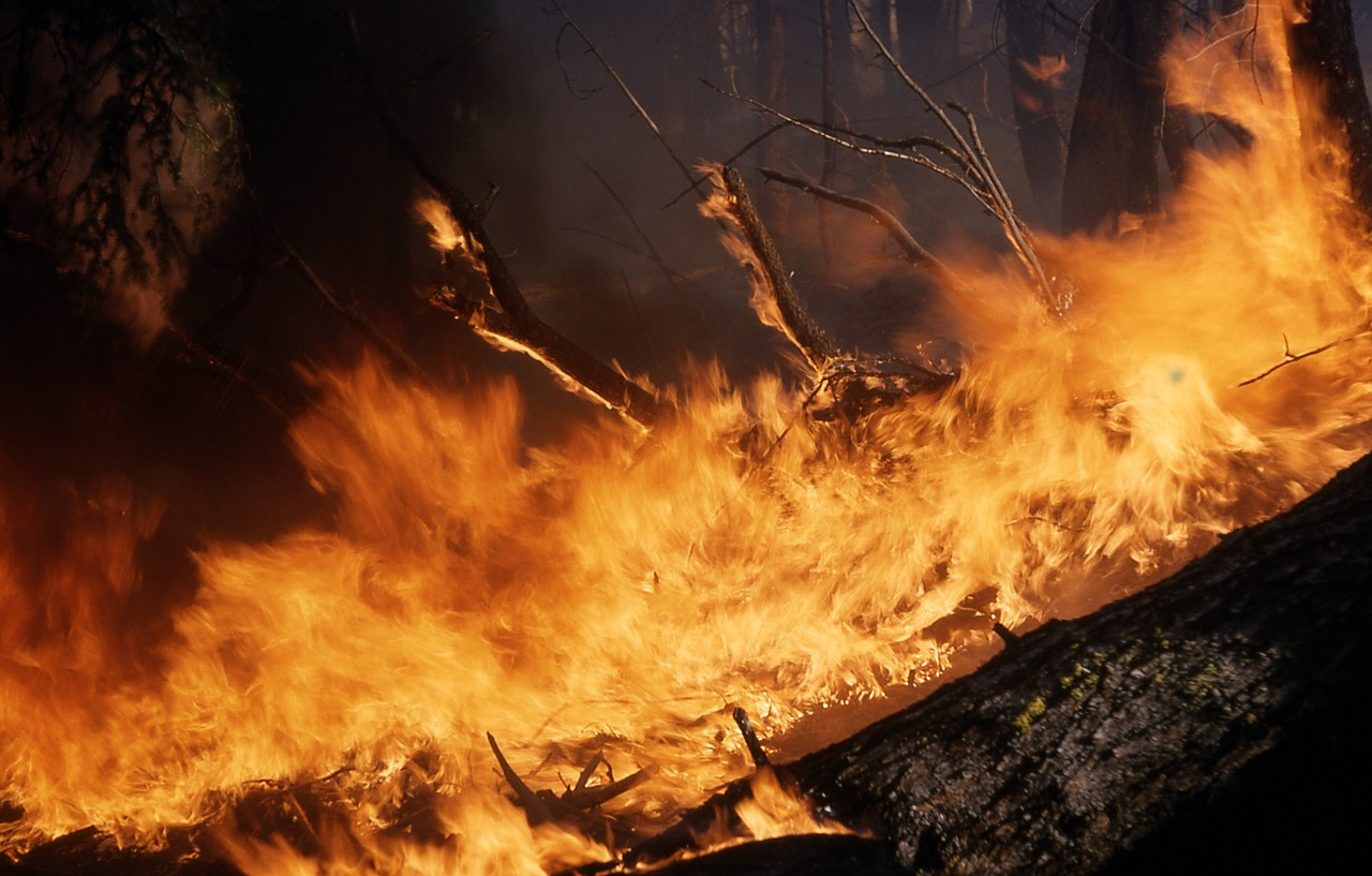 Wildfires threaten water quality