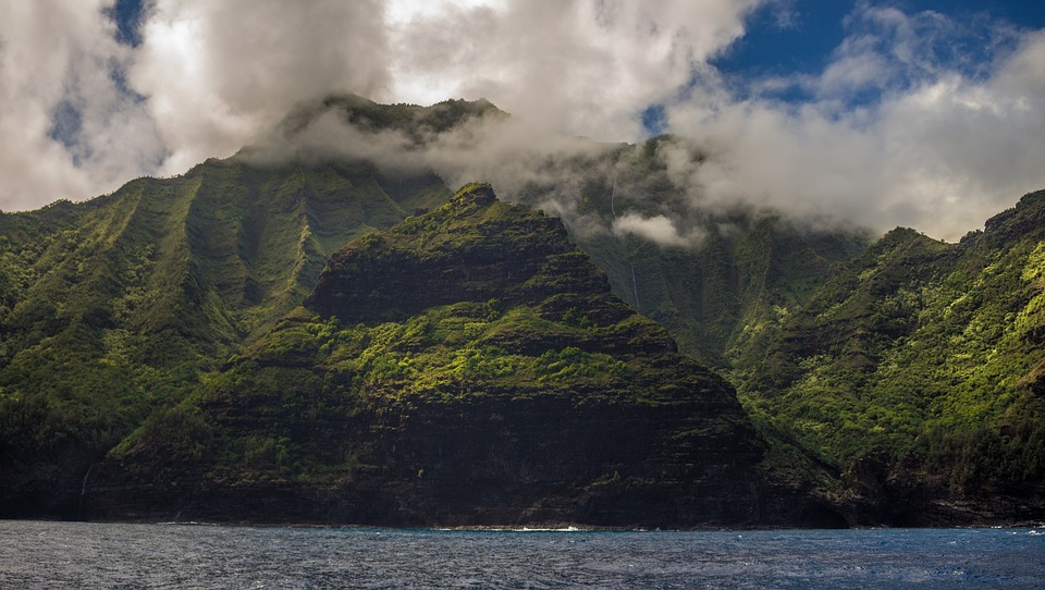 Hawaii uses native plants to reduce water runoff and restore watershed