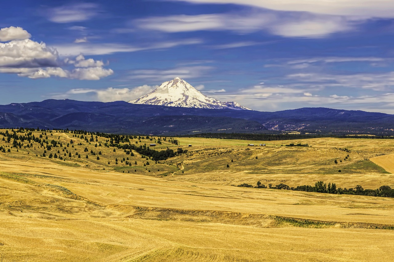 Oregon faces growing drought and water scarcity threats
