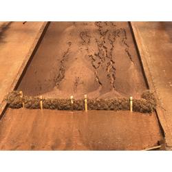 Coir Rectangular Wattle