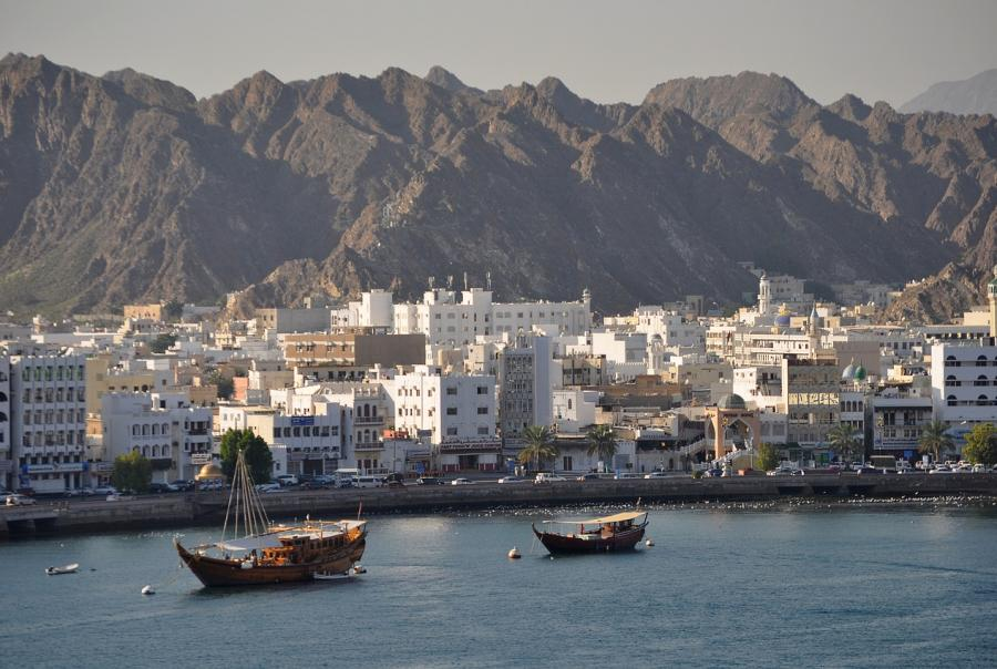 Storm water runoff and pollution leads to dead zone in Gulf of Oman