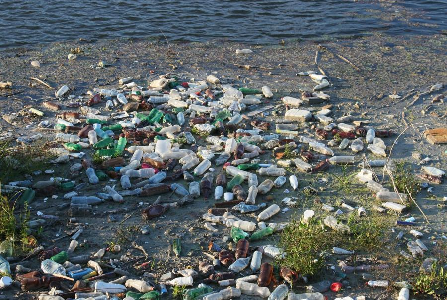 World Oceans Day brings attention to plastic pollution