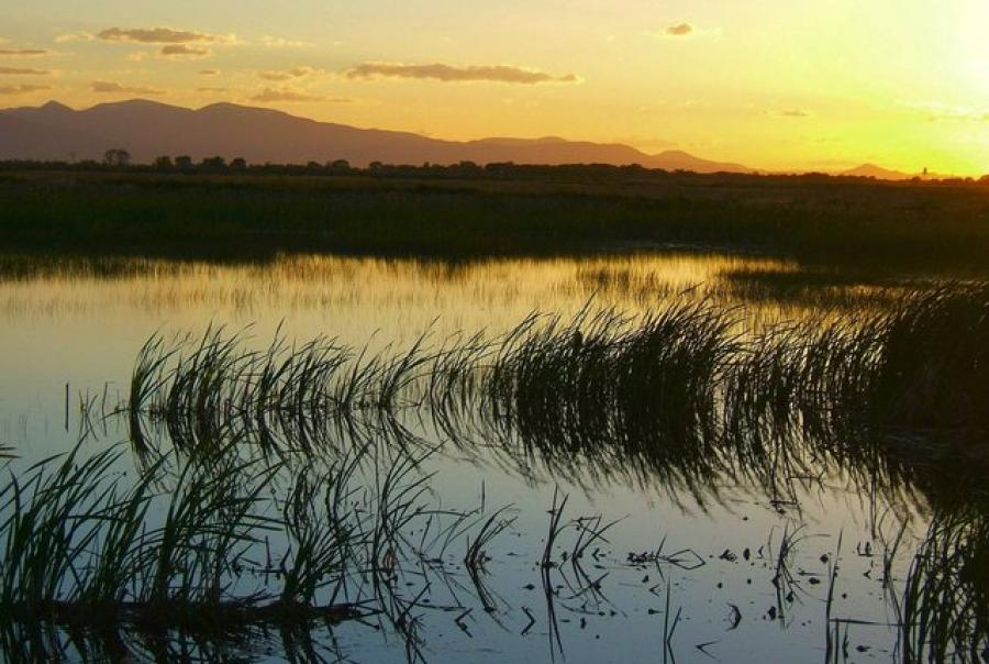wetlands, clean water act, violations, EPA, penalty, agriculture, cropland